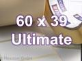 Zebra Rollenetiketten, Format 60 x 39 mm, Z-Ultimate 3000T Silver